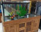 专业鱼缸清洗维护 过滤系统升级 鱼缸维修