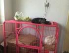 出两个狗笼子,在平安,可以送到西宁