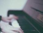 东部新城片收成人、少儿钢琴