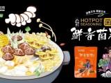 济南火锅食材加盟品牌