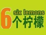 6个柠檬系列饮料 苏打水大力度招商推广