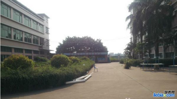 番禺区石基地铁站旁(独院)标准厂房出租