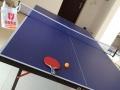低价处理乒乓球桌