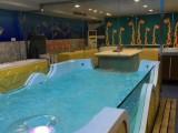 衡阳亲子拆装游泳池水育早教池恒温游泳池厂家制造商