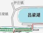 5月28日到吕梁十里杏花村摘杏了