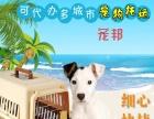 宠物要旅行找聊城宠邦宠物托运(可提供上门接宠)