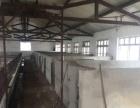 火车站 高速引线 仓库 8000平米
