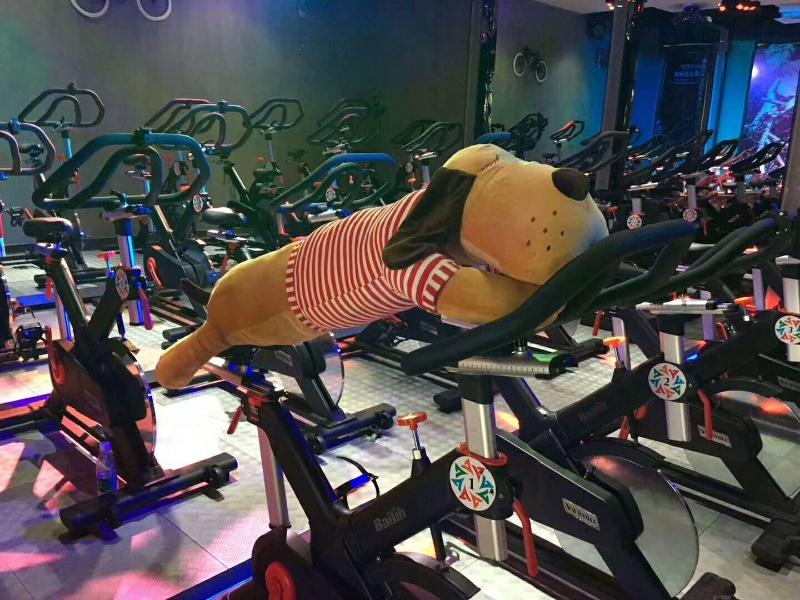 阿比克连锁健身房16周年店庆