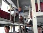 青岛到丽水(客车)长途(汽车)卧铺在哪发车车?多久到?询票价