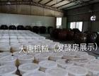 酿酒设备 白酒设备 蒸馏设备 家用酿酒设备