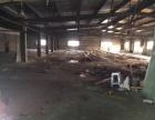 瑞安飞云宋家埭厂房、2000平米、彩钢结构