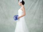 热销推荐 婚纱单色背景布 摄影主题背景布