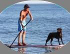 惠州富力湾帆船 皮划艇 桨板体验