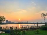 广州2月24日 周三-夜骑户外活动