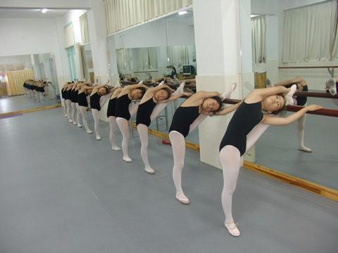 西城展览路附近有没有好的舞蹈培训机构