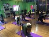 台州舞蹈培训 专业钢管舞爵士舞培训 欢迎你的咨询