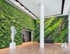 黄冈植物墙 千山素集水培绿洲墙 阳台花园设计