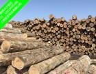 辐射松木方建筑木方精品木方厂家直销