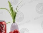 寿百康一次性水晶餐具加盟项目创业改变您的命运