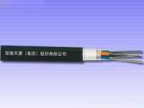 滁州区域专业的光缆,安徽无金属自承式光缆