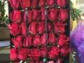 鲜花同城金华七夕情人节玫瑰生日鲜花开业花篮