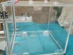 有机玻璃干燥箱 氮气真空干燥箱