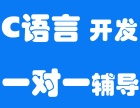 福田c语言基础培训