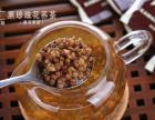 微商加盟苦荞茶-卡麦咖打造苦荞茶领导品牌