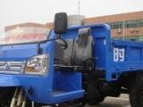批发时风华庆柴油三轮车,半封闭柴油农用车,载货自卸三轮车配件