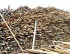 广州增城工地废柴回收 工地废旧木板回收 木方回收