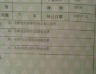 梓潼县许州镇 林地 500亩