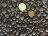 佛山陶粒回填 佛山建筑陶粒 卫生间回填陶粒