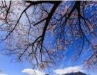 猎豹户外越野自驾 川藏线+青藏线 旅游精品线路攻略