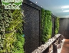 新型天然壁纸装饰植物墙招商加盟