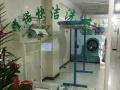 邢台开干洗店投资开干洗店——耀诺洗涤设备