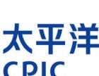 新疆乌市太平洋保险公司明星销售兼职业理财规划师。