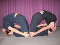 广州番禺瑜伽教练培训 曼扬瑜伽
