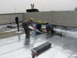 潍坊地区品质好的SBS防水卷材高聚物改性沥青防水卷材批发
