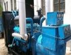 吉林白城市镇赉县柴油机回收