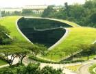 学校垂直绿化怎么做 武汉小学垂直绿化 千山素集