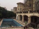 蒲江农村院子鱼池假山设计