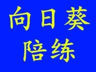 武汉向日葵汽车陪练 手动 自动挡陪驾陪练 特惠价99元一节课