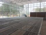 想建连栋温室大棚就到七洲温室工程 蔬菜连栋大棚