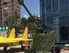 仿真恐龙模型军事展坦克模型蜂巢迷宫租赁镜花宫出租