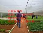 农家乐各种水果 真正的绿色食品 野炊烧烤便宜