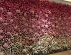 深圳市室内外植物墙花墙设计制作花艺软装