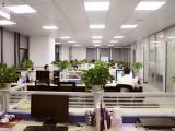 武汉双软优惠政策 软件企业认定服务机构欢迎咨询