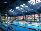 健体无极专业成人 少儿游泳私教提高班!零基础包教会!特惠