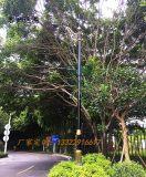 市政工程景观灯仿云石户外防水庭院灯政府非标定制工程路灯景观灯