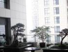 政务区,电梯口新城国际精装260平,格局方正
